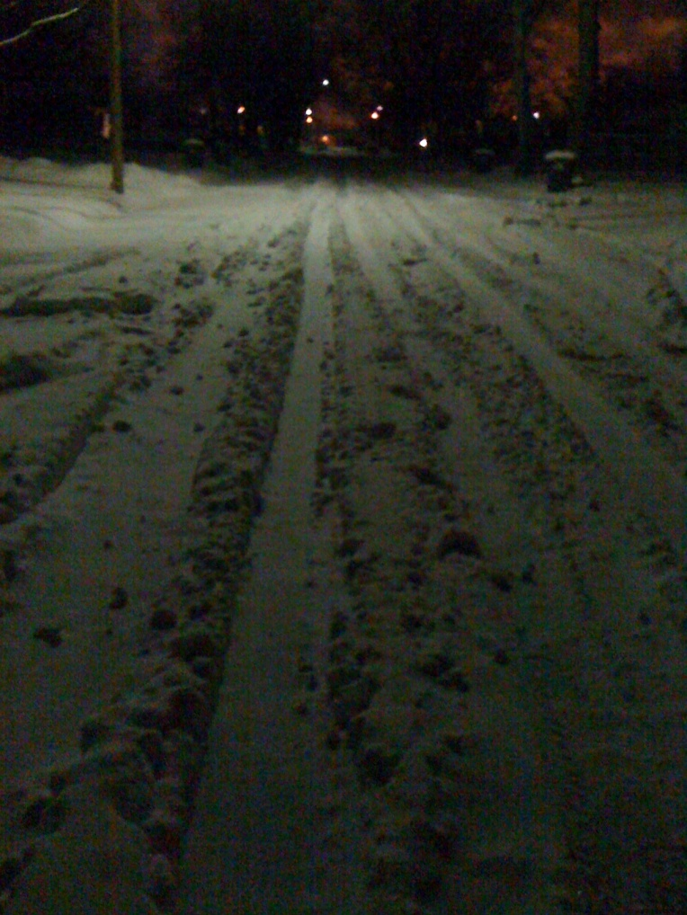 Blizzard of Oz 029a
