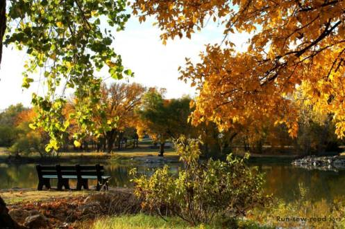 Lake Autumn bench--marked