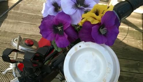 Bike flowers-w