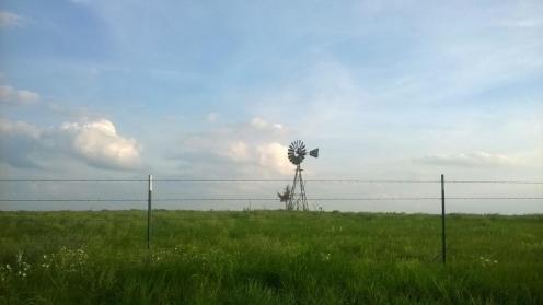 Windmill-w