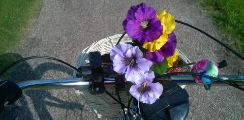 Bike handlebars basket flowers path2