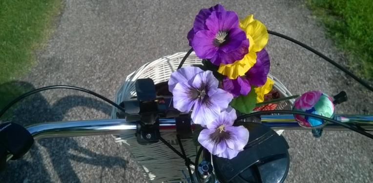 Bike handlebars basket flowers path2