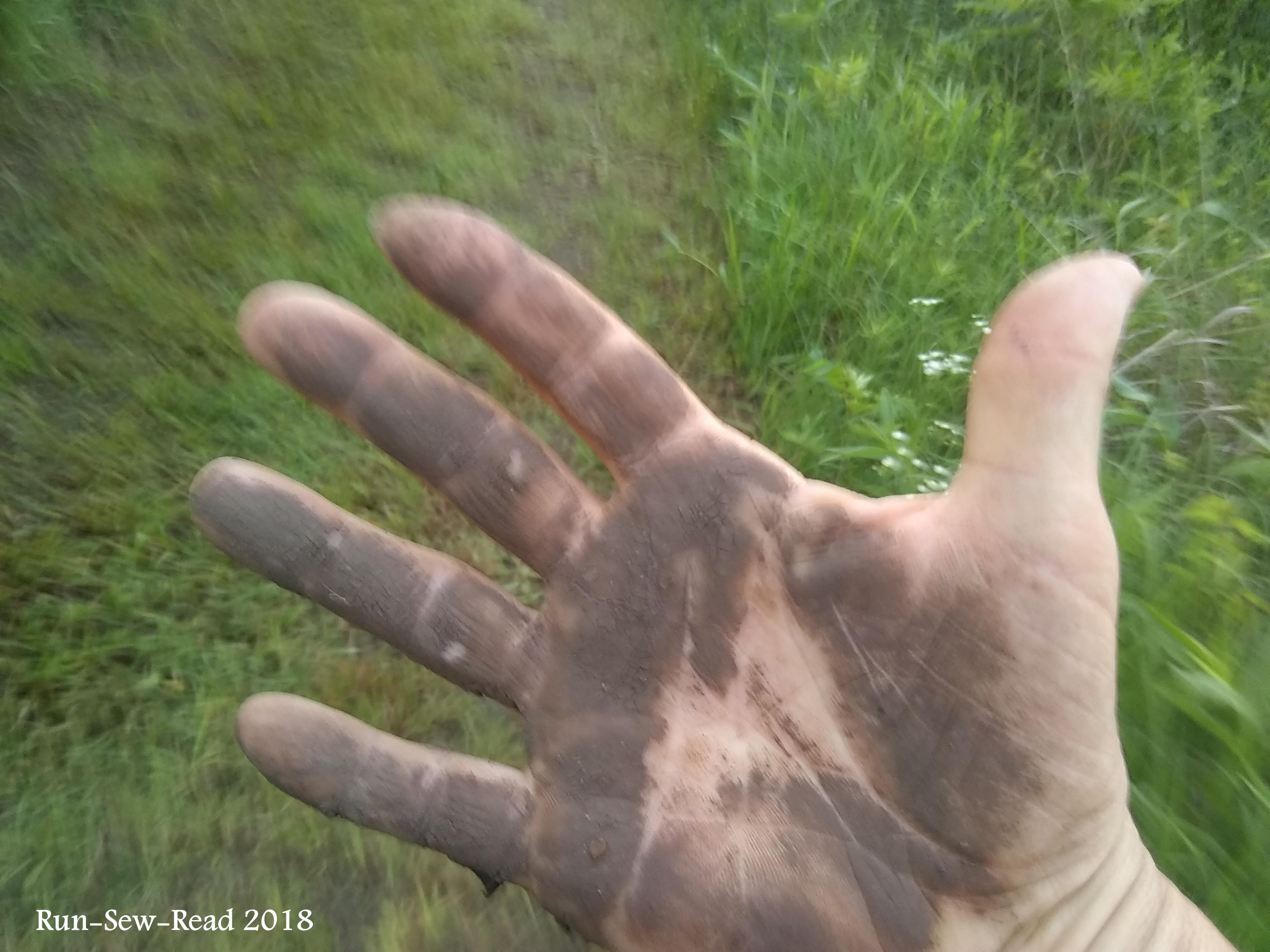 STD muddy hand
