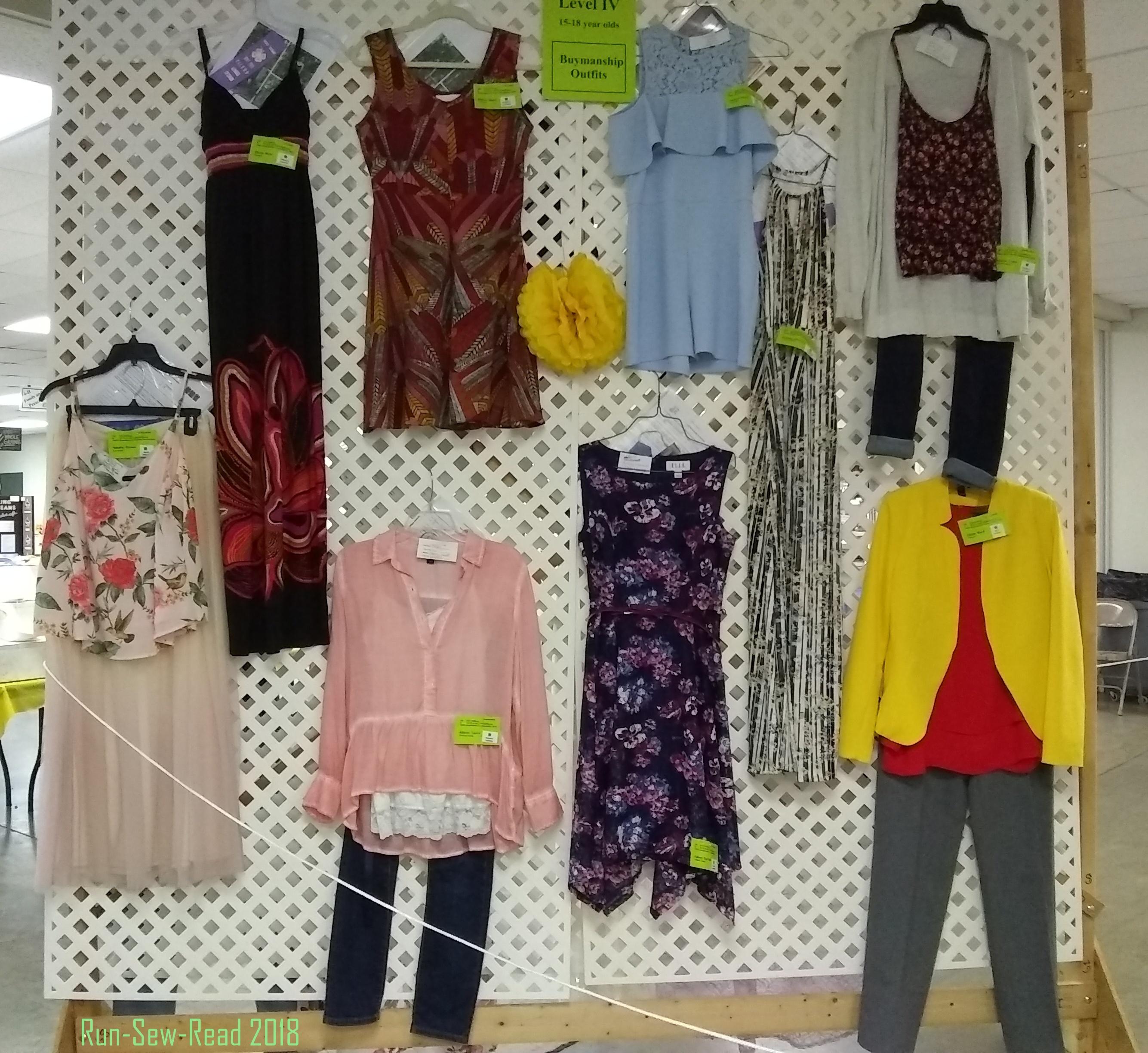 DG County Fair garment construction teens