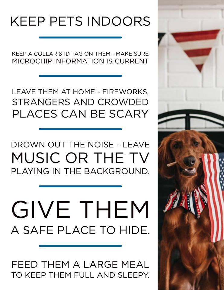 Fourth of July pet tips from KHS