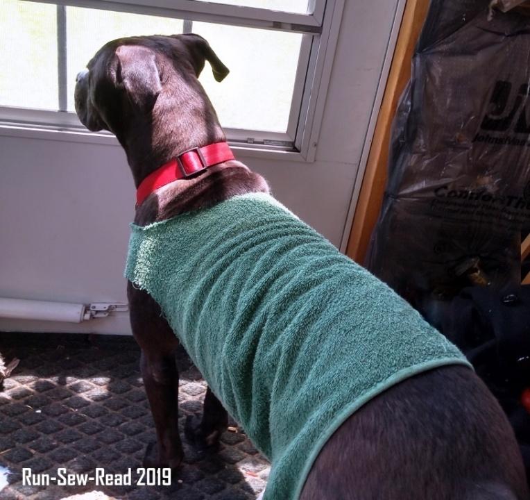Watchdog 2 w RSR